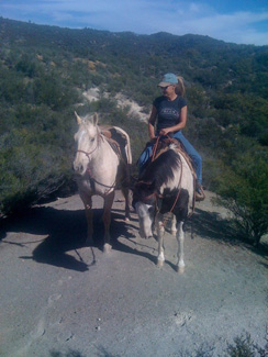 Forever Free Horse Rescue - Bella