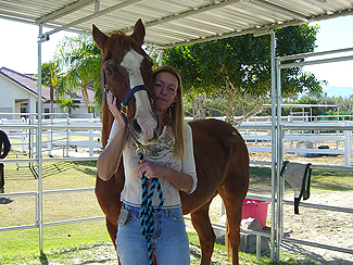 Forever Free Horse Rescue - General