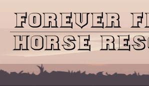 Forever Free Horse Rescue